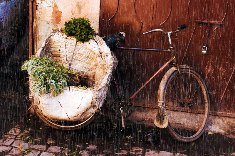 The Herbalist's Sad Bicycle Marrakech Morocco